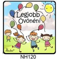 (NH120) Legjobb óvónéni - Hűtőmágnes - Vicces ajándék