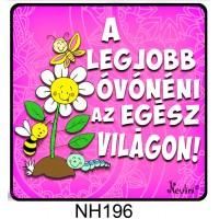 (NH196) A legjobb óvónéni... - Hűtőmágnes - Vicces ajándék
